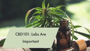 Read more about the article CBD101: CBD Labs Are Important